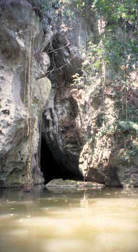 Belize, San Igancio: Entrance to the caves of Barton's Creek