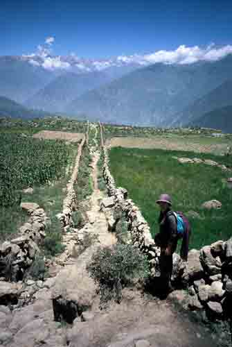 Peru, Colca Canyon: Path from  Cruz del Condor<br />         to Cabanaconde