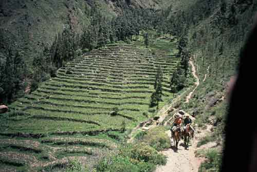 Peru, Valle Sagrado (Sacred Valley of the Incas): Horse riding near Ollantaytambo
