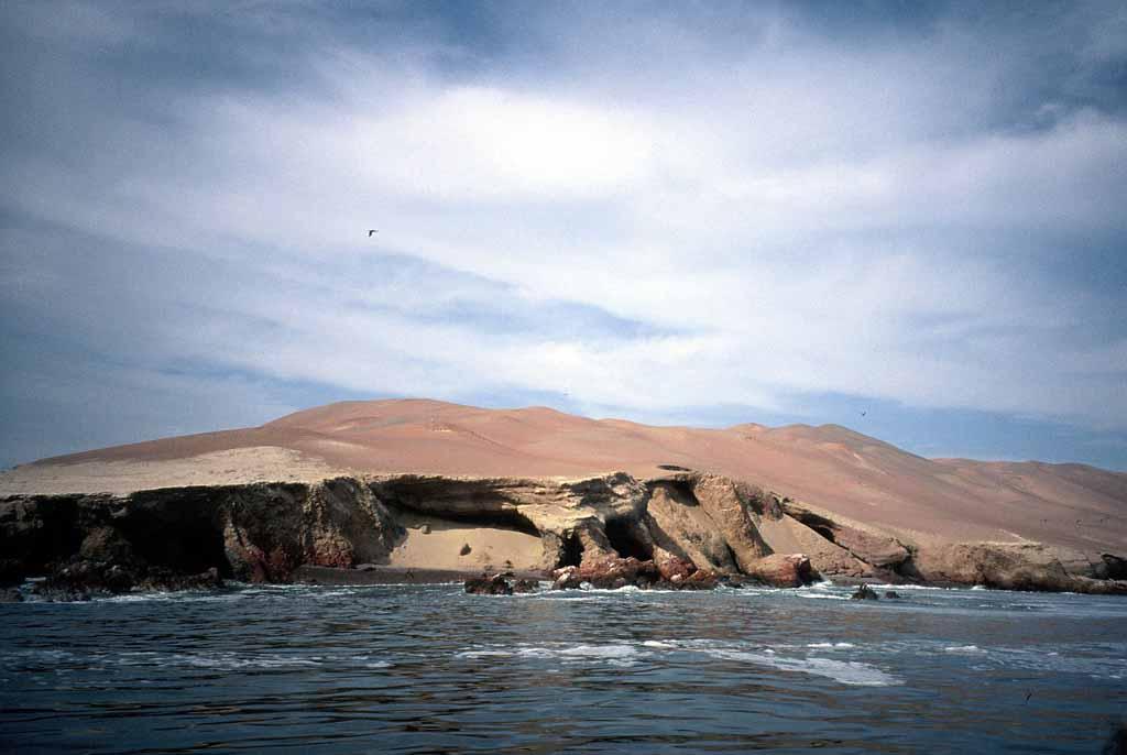 http://volker.umpfenbach.de/bilder/reisen/2006peru/high/Peru_2006_02_11a_Paracas.jpg